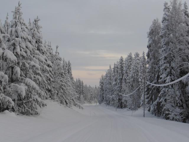 Vägen till Brynjegård 2 ...
