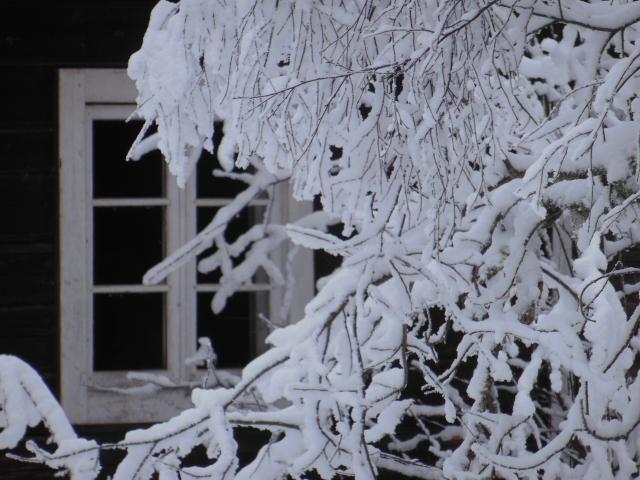 Äldre hus, fönster 5...