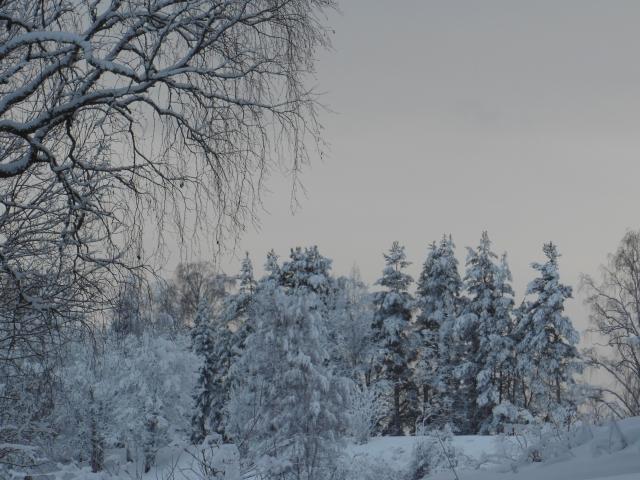 Vinterlandskap 2...