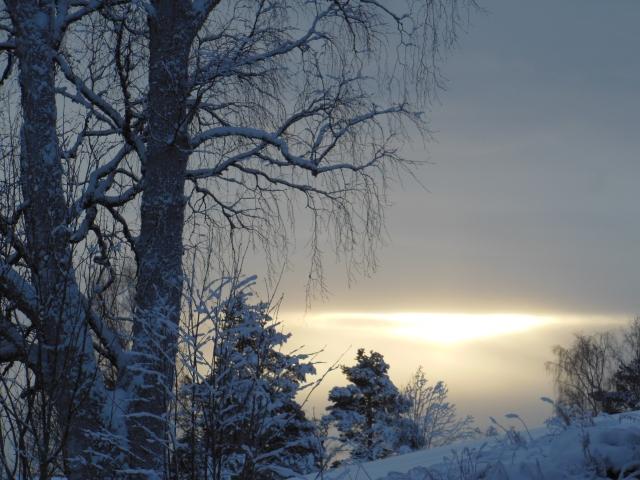 Vinterlandskap 9...
