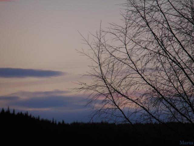 Kvällshimmel 7, 7...