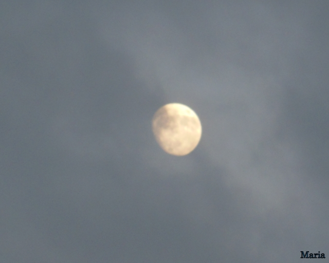 Månen 1, 1...