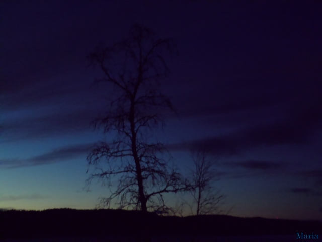 Mörk kvällshimmel 5, 5...