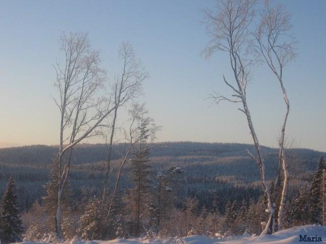 Vinterbild 3, 3...