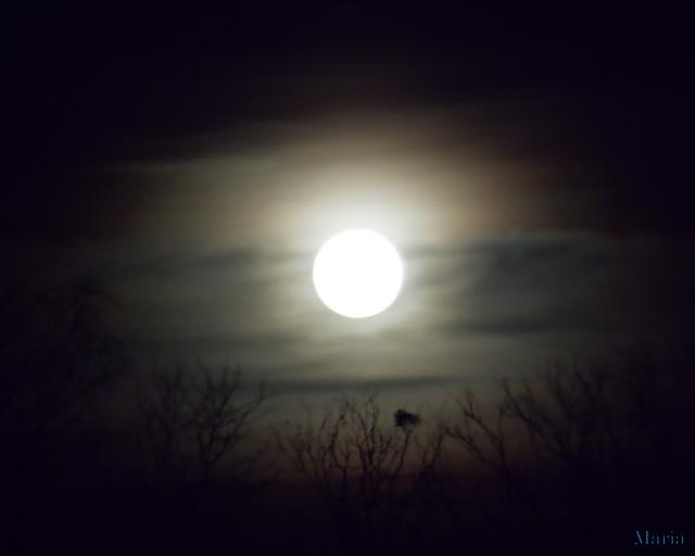 Fullmåne 4, 4...