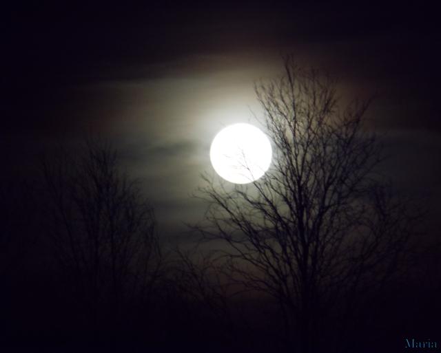 Fullmåne 5, 5...