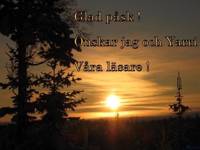 Träd o sol 12 påskhälsning...