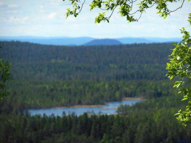 Orsa Björnpark, utsikt 6. 6...