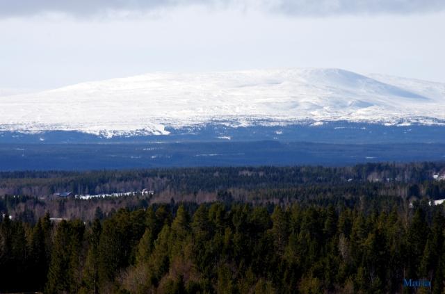 Skog och Oviksfjäll 5,5...