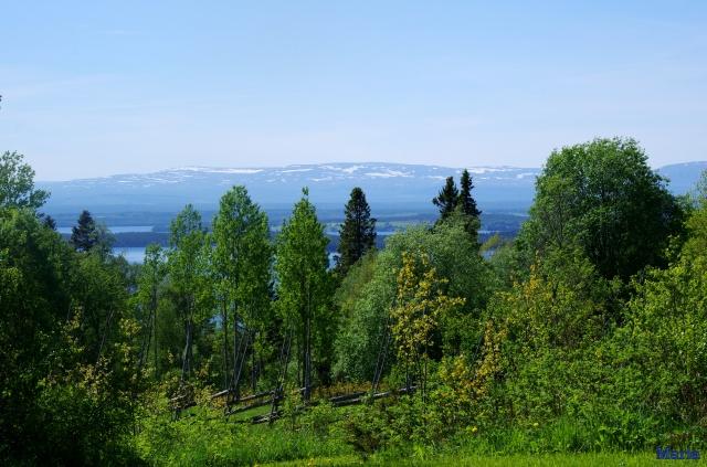 Utsikt från Sommarhagen 6,6...