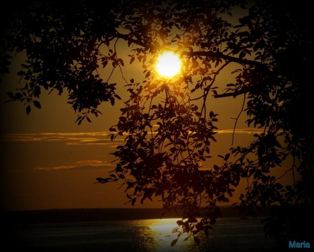 solnedgc3a5ng-5050.jpg